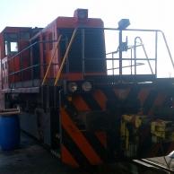 locomotore_1